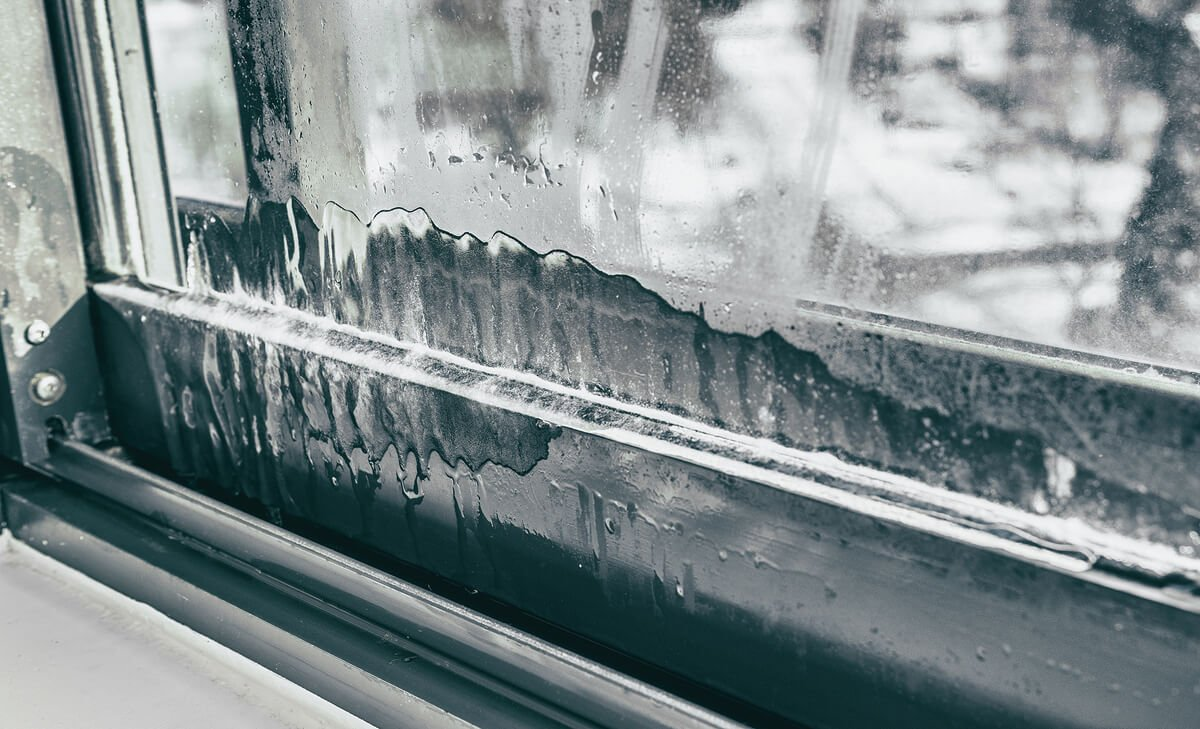Ice on Window Frame